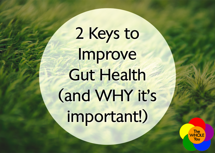 2 Keys to Improve Gut Health (and WHY it's important!)