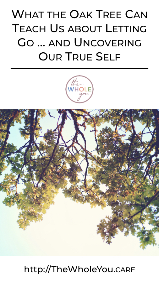 What the Oak Tree Can Teach Us about Letting Go…and Uncovering Our True Self