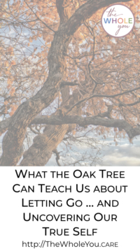 What the oak tree can teach us
