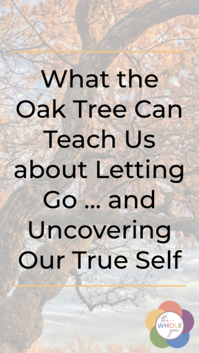 What the oak tree can teach us about letting go